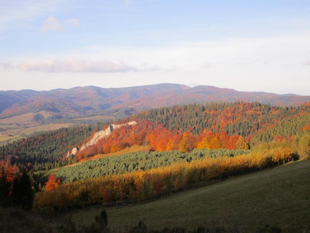jesenné_farby_nad_Jaworkami