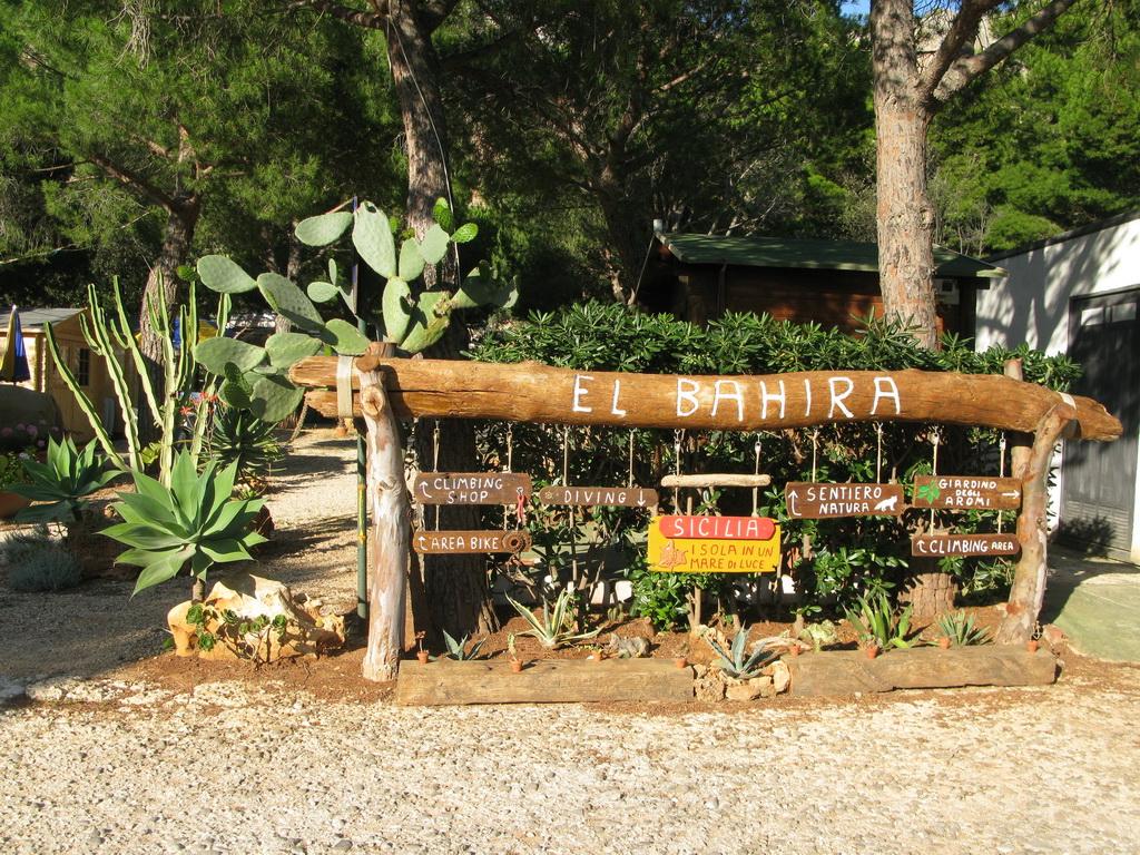 Camping_El_Bahira