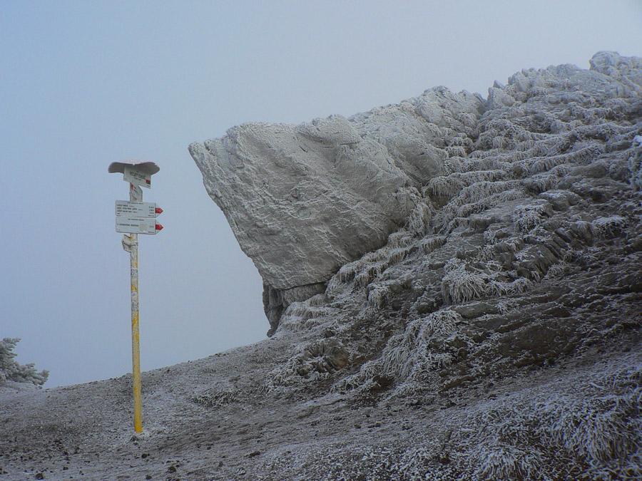 zimny-choc-1-z-liskovej-do-likavky